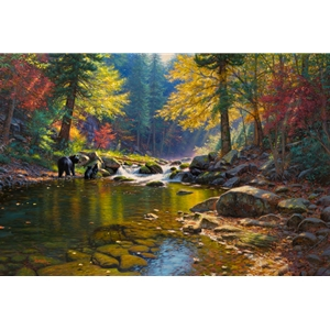 Seasons of Life by Mark Keathley