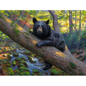Lazy Boy by Mark Keathley