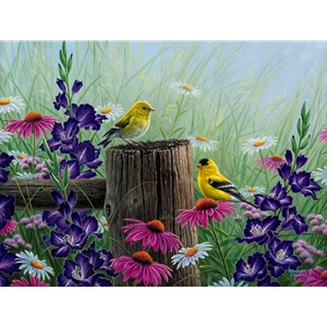 Goldfinch Meadow by Abraham Hunter