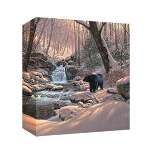 Seasons of Life IV by Mark Keathley - Gallery Wrap