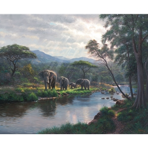 Dreams of Africa by Mark Keathley