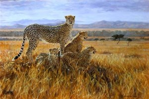 A Vantage Point by Julia Rogers