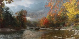 Fall in the Appalachians - Mount Mitchell by Phillip Philbeck