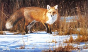 Fox on the Run by Edward Aldrich