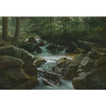 Smoky Mountain Creek, Greenbriar by James Seward 24x36-Original