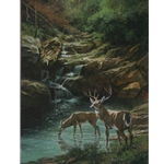 Below Grotto Falls by James Seward 24x18 -Original