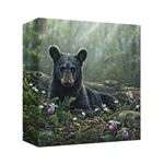 Curious Cub- Gallery Wrap