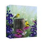 Goldfinch Meadow - Gallery Wrap
