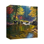 Seasons of Life I by Mark Keathley - Gallery Wrap