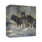Three Amigos by Mark Keathley - Gallery Wrap